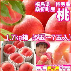 福島県産 特秀品桃 1.7kg箱 5〜7玉入...