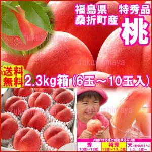 福島県産 特秀品桃 2.3kg箱 6玉〜10玉入...