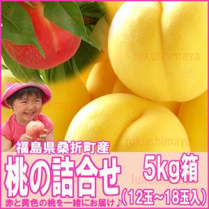 桃 詰合せ 福島県 献上桃の郷 桑折町産 5kg箱 12〜18玉入