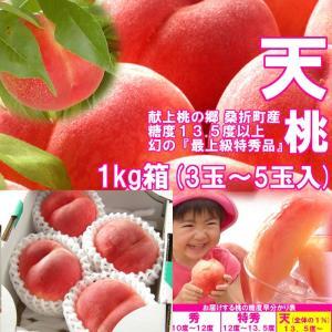 【数量限定】 1%未満の奇跡の極上桃 『天』 1kg箱 (3〜5玉入) fukushimasan