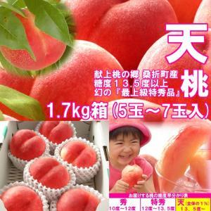 【数量限定】 1%未満の奇跡の極上桃 『天』 1.7kg箱 (5〜7玉入) fukushimasan