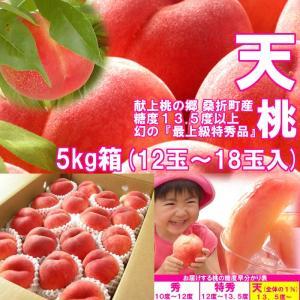 【数量限定】 1%未満の奇跡の極上桃 『天』 5kg箱 (12〜18玉入) fukushimasan