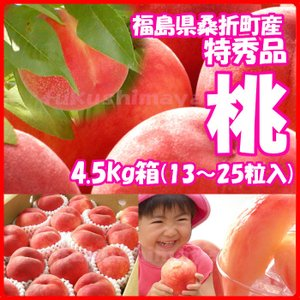 福島県産 特秀品桃 4.5kg箱 18〜25玉入...