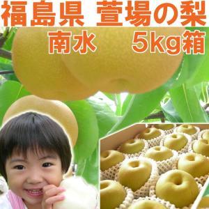 福島県 萱場産 南水 梨 5kg箱  (10〜18玉)|fukushimasan