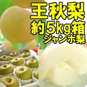 福島県 萱場産 王秋 梨 約5kg箱  (9〜12玉)|fukushimasan