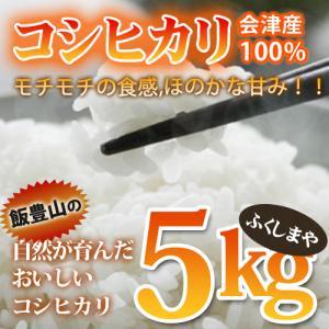 平成30年度 新米 会津産 コシヒカリ 5kg|fukushimasan