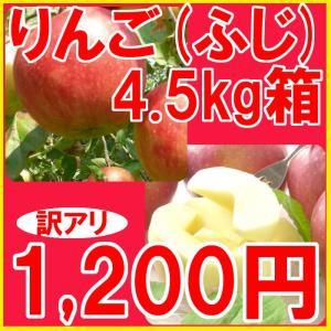福島県産 訳アリ ふじ リンゴ 4.5kg箱 (10〜25玉入)  fukushimasan