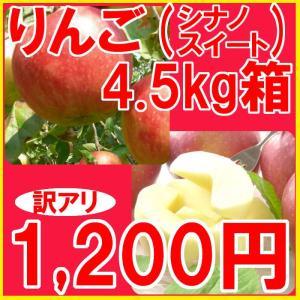 福島県産 訳アリ シナノスイート リンゴ 4.5kg箱 (10〜25玉入)  fukushimasan