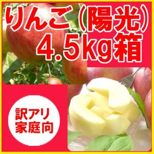 福島県産 訳アリ 陽光 リンゴ 4.5kg箱 (10〜25玉入) 「ふくしまプライド。体感キャンペーン(果物/野菜)」 fukushimasan