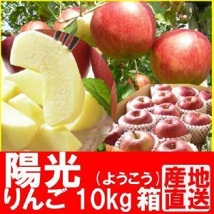 福島県産 陽光 リンゴ 10kg箱 (24〜36玉入) 「ふくしまプライド。体感キャンペーン(果物/野菜)」 fukushimasan