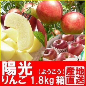 福島県産 陽光 リンゴ 1.8kg箱 (5〜7玉入) 「ふくしまプライド。体感キャンペーン(果物/野菜)」 fukushimasan