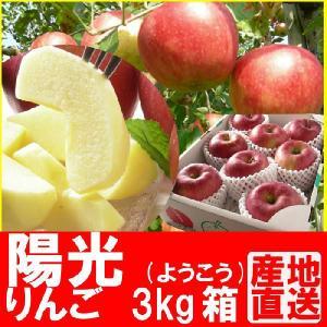 福島県産 陽光 リンゴ 3kg箱 (7〜11玉入) 「ふくしまプライド。体感キャンペーン(果物/野菜)」 fukushimasan