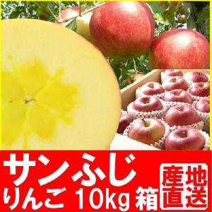 福島県産 サンふじ リンゴ 10kg箱 (24〜36玉入) fukushimasan