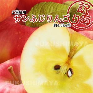 福島県産 訳アリ サンふじ リンゴ 4.5kg箱 (12〜25玉入)