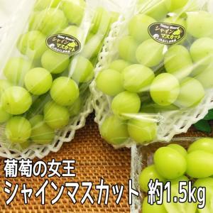 シャインマスカット  約1.5kg (3〜6房入) 皮ごと食べられる 産地直送 ぶどう fukushimasan