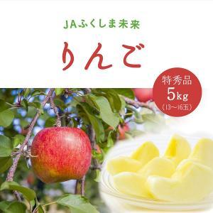 サンふじりんご 5kg 贈答用|fukusimamirai