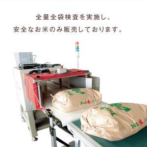 特栽コシヒカリ「吾妻の輝き」 玄米10kg|fukusimamirai|04