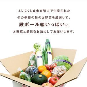 採れたて野菜詰め合わせセット fukusimamirai 03