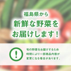 採れたて野菜詰め合わせセット fukusimamirai 05