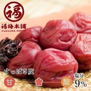 紀州 和歌山 南高梅干 しそ漬梅うすしお味500g(小粒サイ...