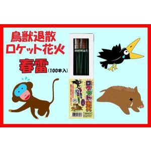花火 ロケット花火 鳥獣退散 春雷(100本入)