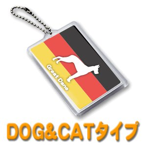 ミラー【ペット DOG&CAT】ハメパチ (ネコポス可)|fun-create