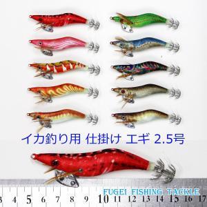 夜光 エギ 2.5号 10個 セット イカ釣り エギング セット 仕掛け【Y20egi25hpyN10】|fun200988