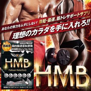 HMB プラチナムメタル BODY 250mg 200粒 約...