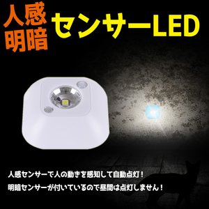 人感明暗センサー搭載LEDライト 省エネセンサーライト 昼白色 小型 自動点灯 ガレージ 廊下 寝室 階段 トイレなどに設置 30秒点灯 LEDS63|funlife