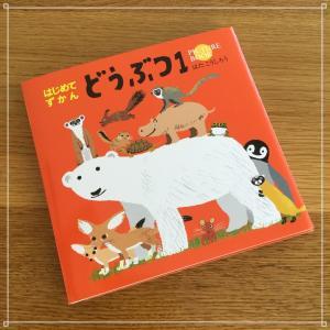 2 はじめてずかん どうぶつ1 絵本 子ども 知育 メール便 200円 コクヨ funny-gift
