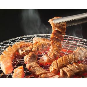 亀山社中 焼肉・BBQボリュームセット 5.1kg|funnyfunny|06