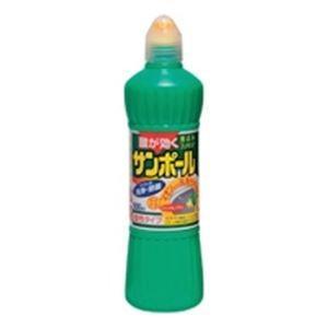 (業務用30セット)大日本除蟲菊 サンポール ノズル付 500ml|funnyfunny