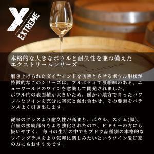 【送料込】リーデル レッドワイン 2脚セット 4442/0 RIEDEL ギフト プレゼント ワイングラス グラス 在宅 おうち時間|funvinoshop|02
