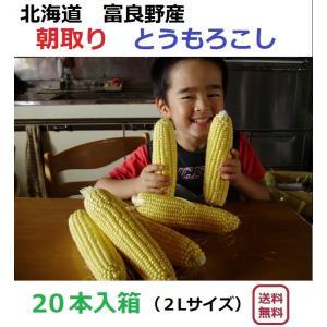 富良野産  とうもろこし 20本入箱  【北海道 農家直送】|furano-kanofarm
