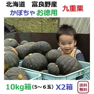 富良野産 カボチャ 九重栗/10kg箱X2箱 【お得用】|furano-kanofarm