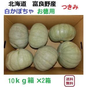 富良野産 白かぼちゃ つきみ 10kgX2箱 【お徳用】 |furano-kanofarm
