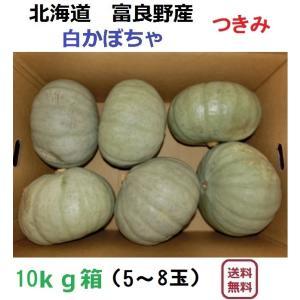 富良野産 白かぼちゃ つきみ/10kg(5〜6玉入)|furano-kanofarm