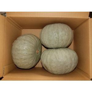富良野産 白かぼちゃ つきみ5kg(3玉入り)|furano-kanofarm