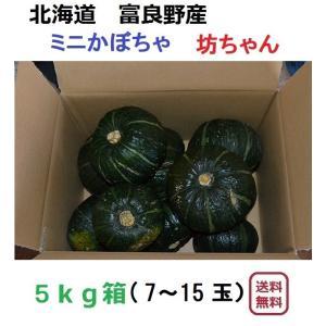 富良野産 坊ちゃん5kg(7〜15玉入り)【無農薬】|furano-kanofarm