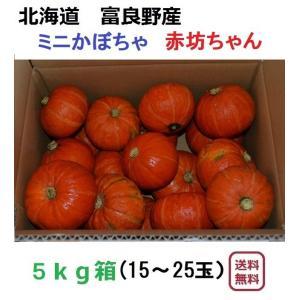 富良野産 赤 坊ちゃん5kg(15〜25玉入り)【無農薬】|furano-kanofarm