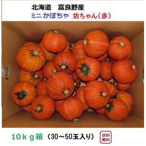 富良野産 赤 坊ちゃん10kg(30〜50玉入り)|furano-kanofarm