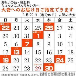 こいのぼり 鯉のぼり おしゃれ 庭園スタント゛セット 千寿鯉 2m 6点セット|fureaigift|05