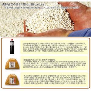 根田醤油 二年もろみ醤油500ml×1本 甘口タイプ お試しサイズ|fureaigift|02