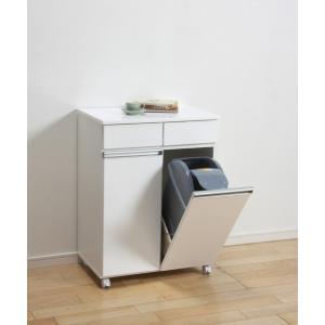 ダストボックス ゴミ箱 19Lペール2ヶ付 2D ホワイト|furniture-direct