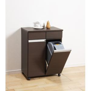 ダストボックス ゴミ箱 19Lペール2ヶ付 2D ダークブラウン|furniture-direct