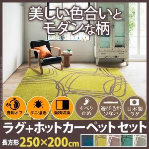 ホットカーペット・カバー 3畳 (250x200cm)+ホッ...