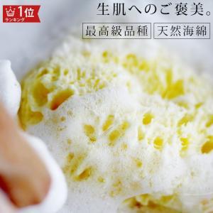 送料無料 天然海綿  ベリーニ (ハニコム種)スポンジ 高品質ボディスポンジ スポンジ 乾燥肌 アトピー|furo