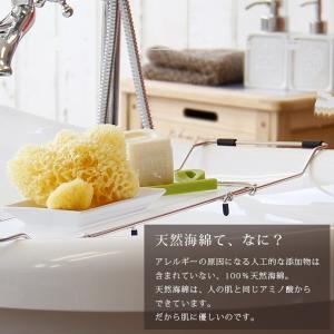 送料無料 天然海綿  ベリーニ (ハニコム種)スポンジ 高品質ボディスポンジ スポンジ 乾燥肌 アトピー|furo|03