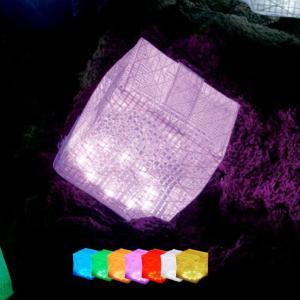 【送料無料】LEDソーラーライト「キャリー・ザ・サン(CARRY_THE_SUN)」レインボー(ミディアム)【バスルーム 防水グッズ 屋外 ガーデンライト アウトドア】 furo