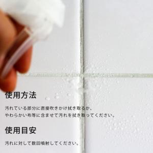 住宅用洗剤「BATHLIER」アルカリウォーター(300mlボトル)|furo|04